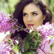 Outdoors portrait of Brunette young woman in lilac flowers, spri — Stock Photo
