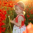 Happy Smiling little girl in red poppies filed, sunset. Outdoors — Stock Photo