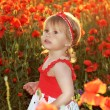 Funny little girl in red poppies filed, sunset. Outdoors portrai - Stock fotografie