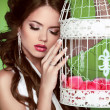 Portrait sexy woman with vintage bird cage isolated on green bac — Stock Photo #31276449