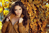 Beautiful elegant woman standing in a park in autumn, outdoors p — Stockfoto