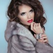 Beauty Fashion Model Girl in Mink Fur Coat. Beautiful Luxury Win — Stock Photo #39321155