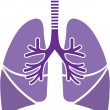 Healthy Lungs — Stock Vector #42679407