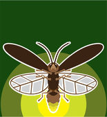 Firefly — Stockvector