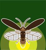 Firefly — Stock Vector