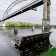 Flood waters in park - Stock Photo