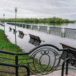 Flood waters in park — Foto Stock