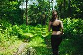 Movimentar-se na floresta — Foto Stock