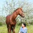 Woman and chestnut horse at the blooming field — Stock Photo