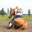 Stock Photo: Young blonde womsitting on lying horse