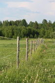Wooden farm fence at the pasture — Stock Photo