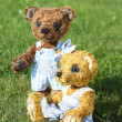 Two teddy bears romance in the garden — Stock fotografie