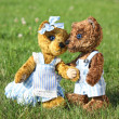 Two teddy bears romance in the garden — Stock Photo