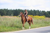 Teenage girl riding chestnut horse along the road — Stock Photo