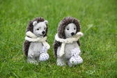 Two cute hedgehog toys in the park — Stock Photo