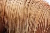 Chestnut horse mane close up — Stock Photo