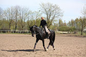Blonde frau reitpferd schwarz — Stockfoto