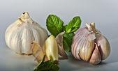 Garlic - favorite vegetable — Stock Photo