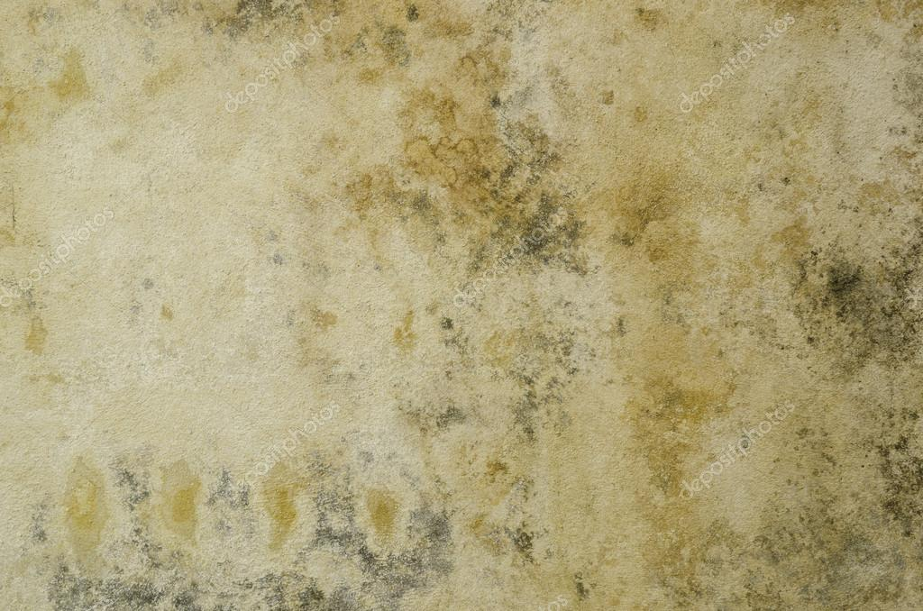 Dirty and wet wall, textured background — Stock Photo #12403036