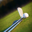 Golf club and ball — Stock Photo