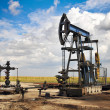 Oil pump jack — Stock Photo