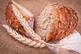 Pão e trigo — Foto Stock