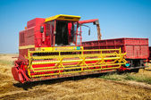 Combine harvesting wheat — Stockfoto