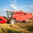 Combine harvesting wheat — Stock Photo #28055525