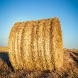 Landscape with bales of straw — Stock Photo
