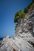 Layered Rocks and clear Sea — Stock Photo