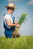 Farmer in the Field — Stock Photo