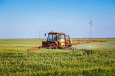 Tractor spraying wheat field with sprayer — Stock Photo