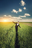 Businessman in a wheat field — Stock Photo