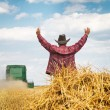 Farmer in wheat field with harvester — Stock Photo #48533465