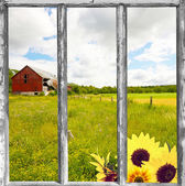 Country view through an old window. — Stockfoto
