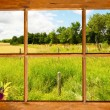 Summer country view through window. — Stock Photo