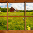 Window view country landscape. — Stock Photo #24791037
