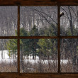 Winter lanscape through old window. — Stock Photo