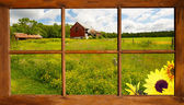 Window view country landscape. — Stock Photo
