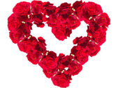 Red roses in the form of heart on a white background closeup — Stock Photo