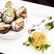 Escargots — Stock Photo