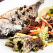Gilt-head bream fish — Stockfoto