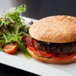 Hamburger — Stock Photo #20101927
