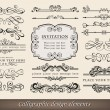 Calligraphic elements and page decoration — Stock Vector