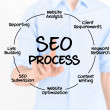 SEO Process Diagram — Stockfoto