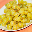Grapes on the table - Stock Photo