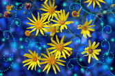 Magic yellow flowers — Stock Photo