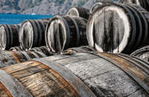 Oak wine casks on vineyard — Stock Photo