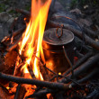 Pan on a fire — Stock Photo #12705459