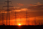 Electric power transmission lines at sunset — Stock Photo